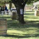 AZ-Wine-Fest-3