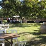 AZ-Wine-Fest-4