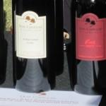 AZ-Wine-Fest-5