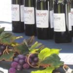 AZ-Wine-Fest-6