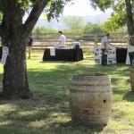 AZ-Wine-Fest-7