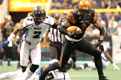 Image result for Arizona Rattlers