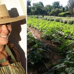 Wire | Join Maya's Farm CSA to Get Your Veggies