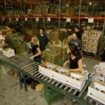 Volunteering in Phoenix – St. Mary's Food Bank