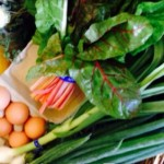 Wire | Eat Fresh from the Farm with a Fall CSA