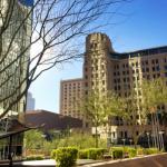 Nook Finds a Niche in Downtown Phoenix