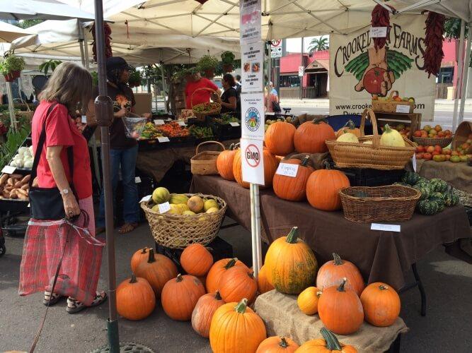Public market pumpkins