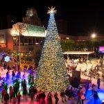 Celebrate the Holidays at CitySkate