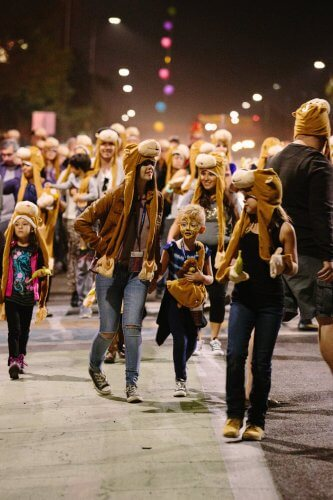 photo-gaf-2015-photo-by-jessica-hately-monkeys-marching-by-jessica-hately