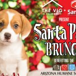 Genuine Concepts Partners with Arizona Humane Society
