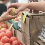 UA College of Medicine to Host Downtown Phoenix Wellness Market